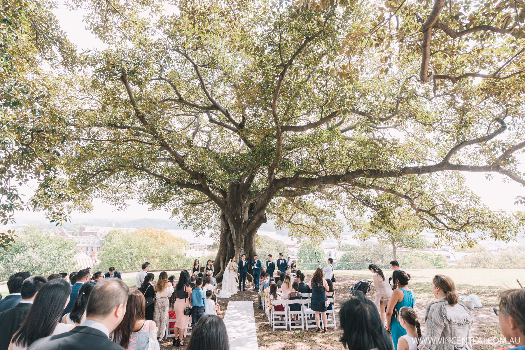 Observatory Hill Park Wedding Ceremony