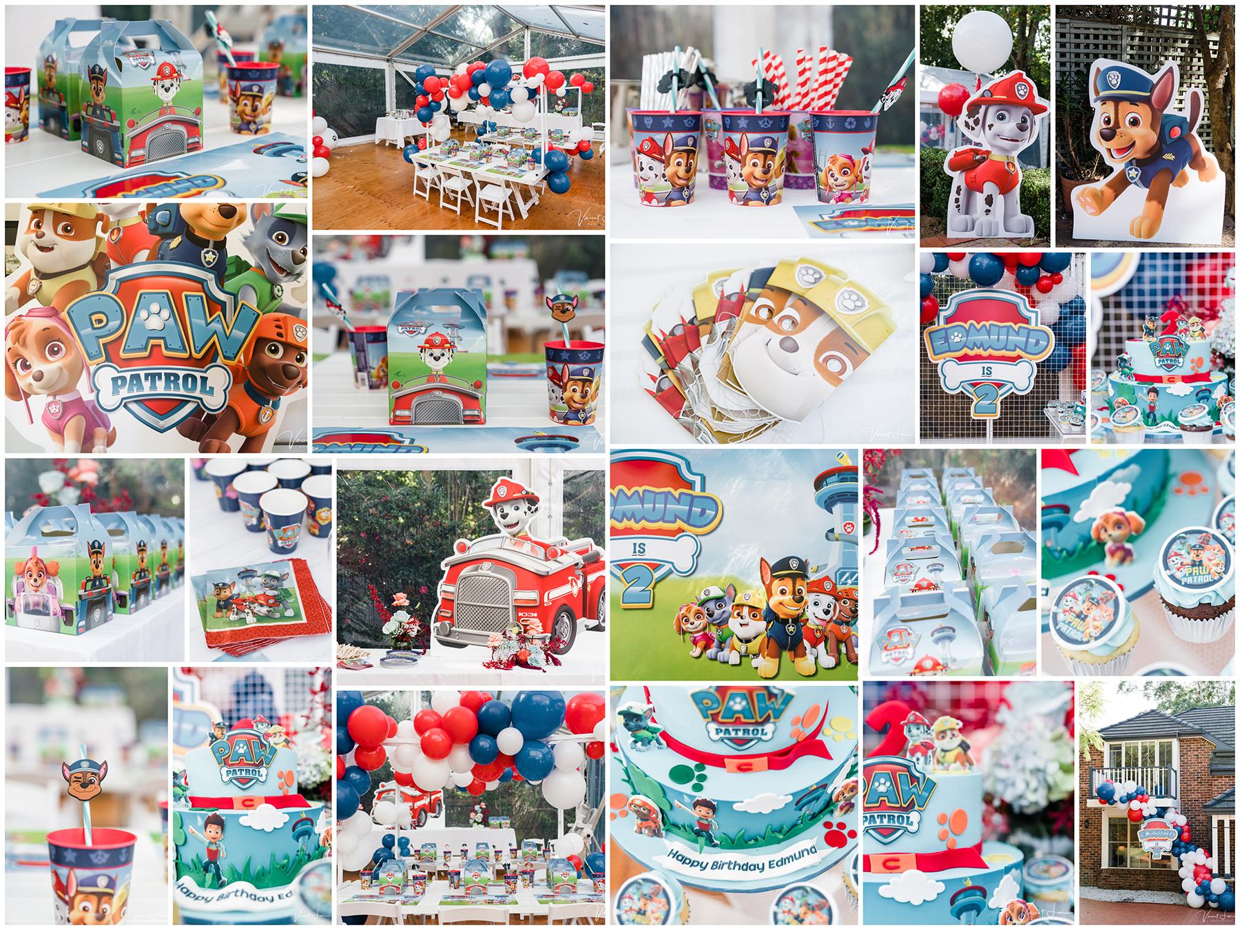 Paw Patrol Kids Birthday Party