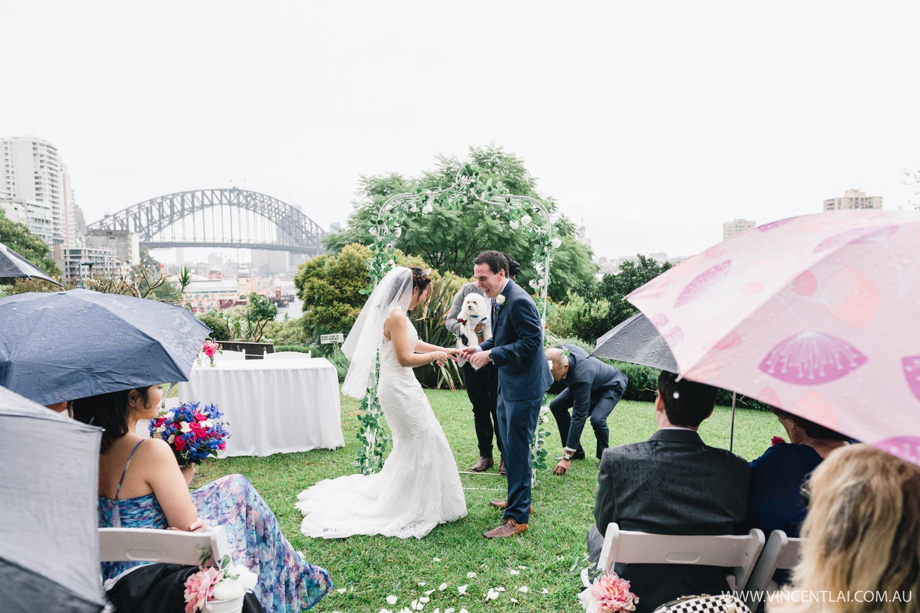Wedding at Clark Park Lavender Bay