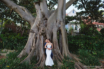Lavender Bay prewedding photo session